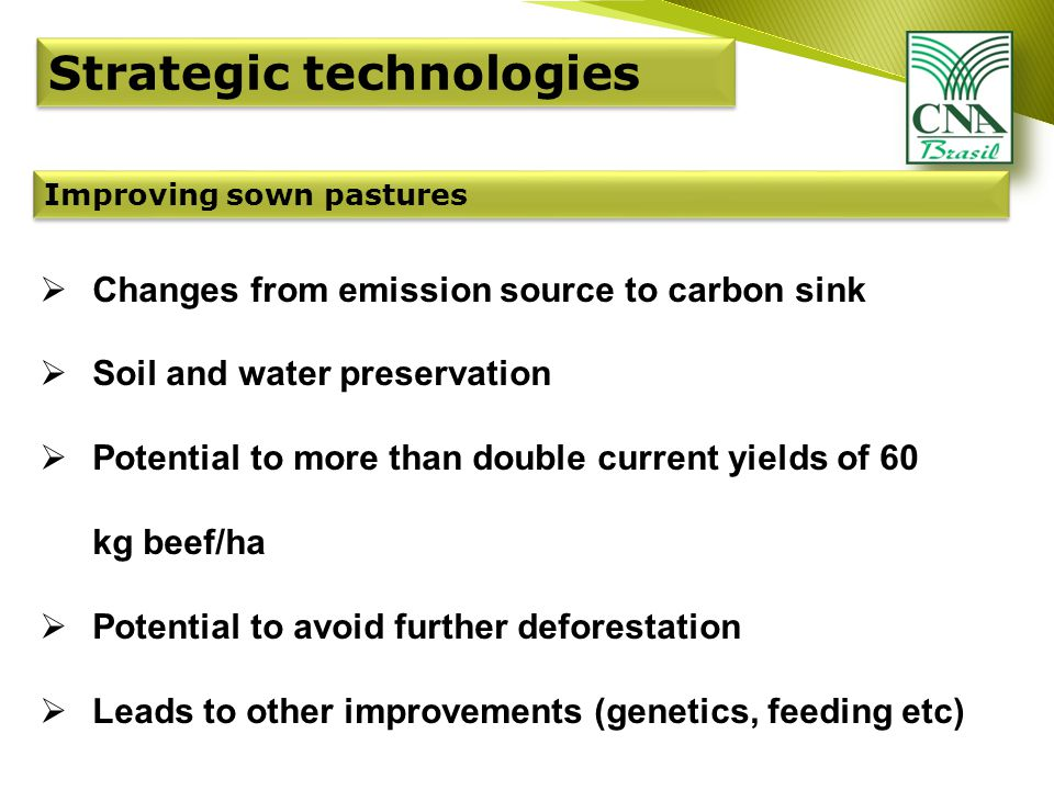 Improving sown pastures  Changes from emission source to carbon sink  Soil and water preservation  Potential to more than double current yields of 60 kg beef/ha  Potential to avoid further deforestation  Leads to other improvements (genetics, feeding etc)