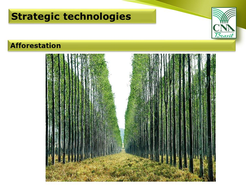Afforestation Strategic technologies