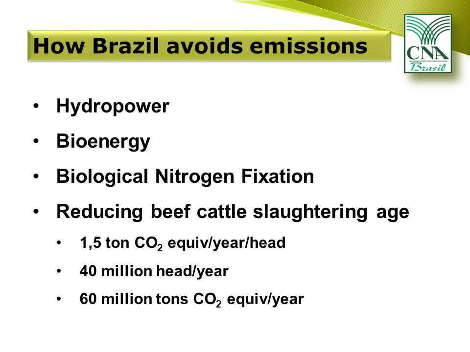 Hydropower Bioenergy Biological Nitrogen Fixation Reducing beef cattle slaughtering age 1,5 ton CO 2 equiv/year/head 40 million head/year 60 million tons CO 2 equiv/year How Brazil avoids emissions
