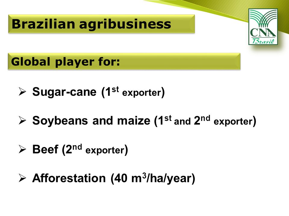 Brazilian agribusiness  Sugar-cane (1 st exporter )  Soybeans and maize (1 st and 2 nd exporter )  Beef (2 nd exporter )  Afforestation (40 m 3 /ha/year) Global player for:
