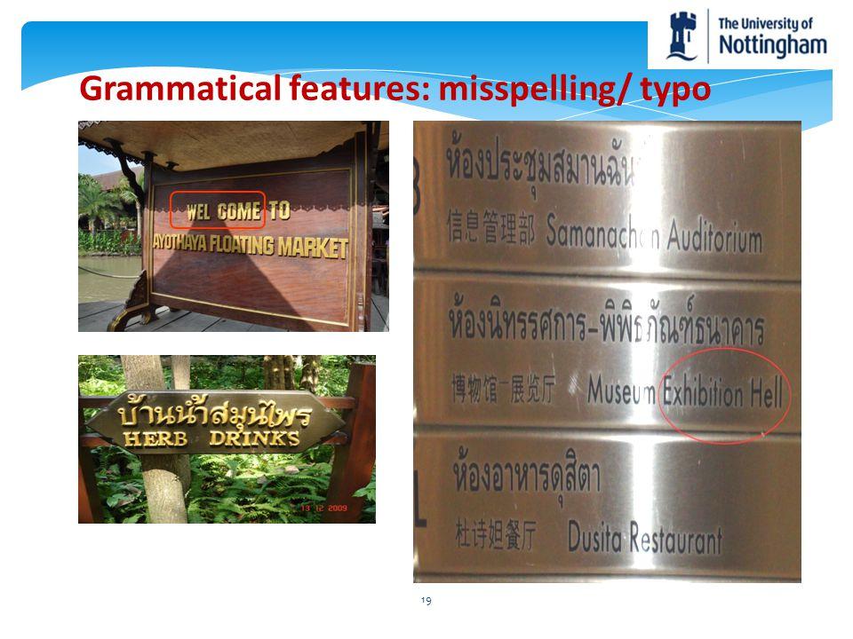 Grammatical features: misspelling/ typo 19