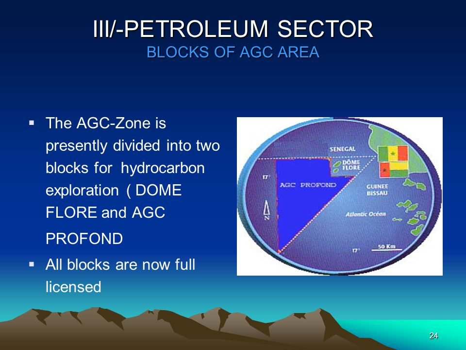 23 III/-PETROLEUM SECTOR  The petroleum ressources constitute the first wealf of the Common Exploitation Zone.
