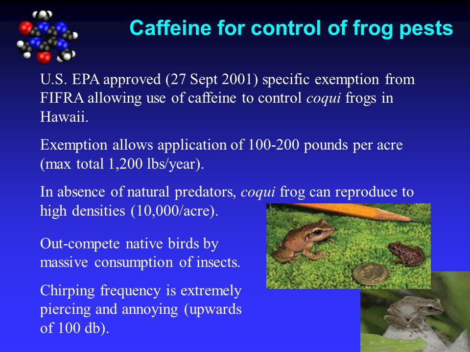 Caffeine for control of frog pests U.S. EPA approved (27 Sept 2001) specific exemption from FIFRA allowing use of caffeine to control coqui frogs in H