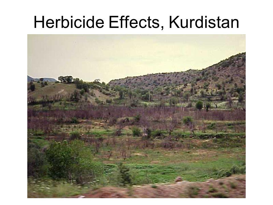 Herbicide Effects, Kurdistan