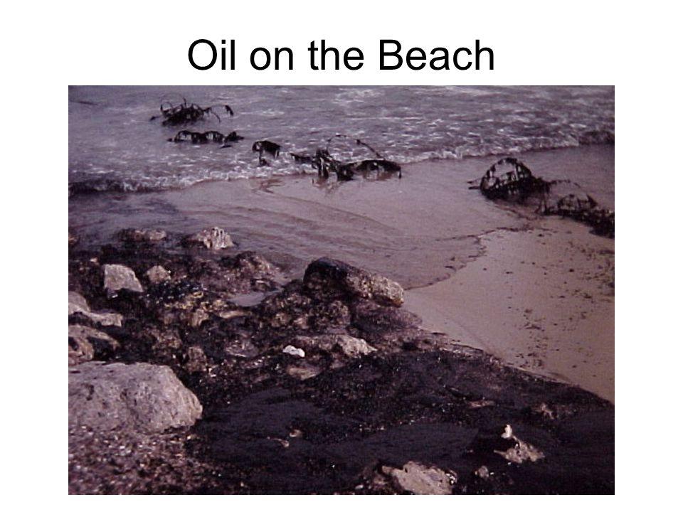 Oil on the Beach