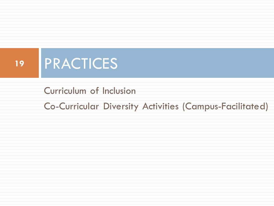 Curriculum of Inclusion Co-Curricular Diversity Activities (Campus-Facilitated) PRACTICES 19