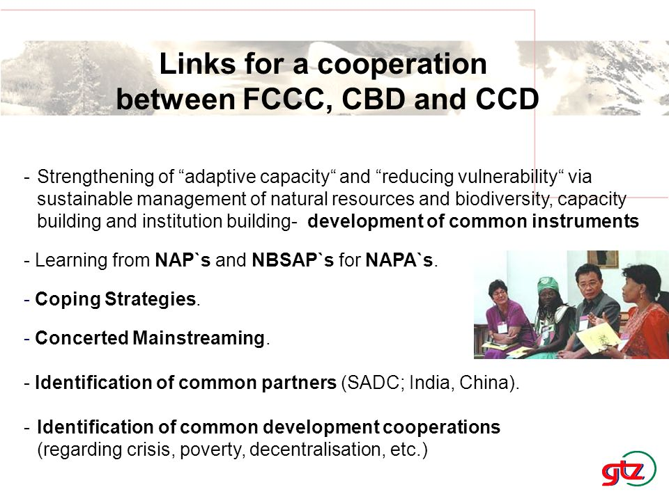 """Links for a cooperation between FCCC, CBD and CCD -Strengthening of """"adaptive capacity"""" and """"reducing vulnerability"""" via sustainable management of nat"""