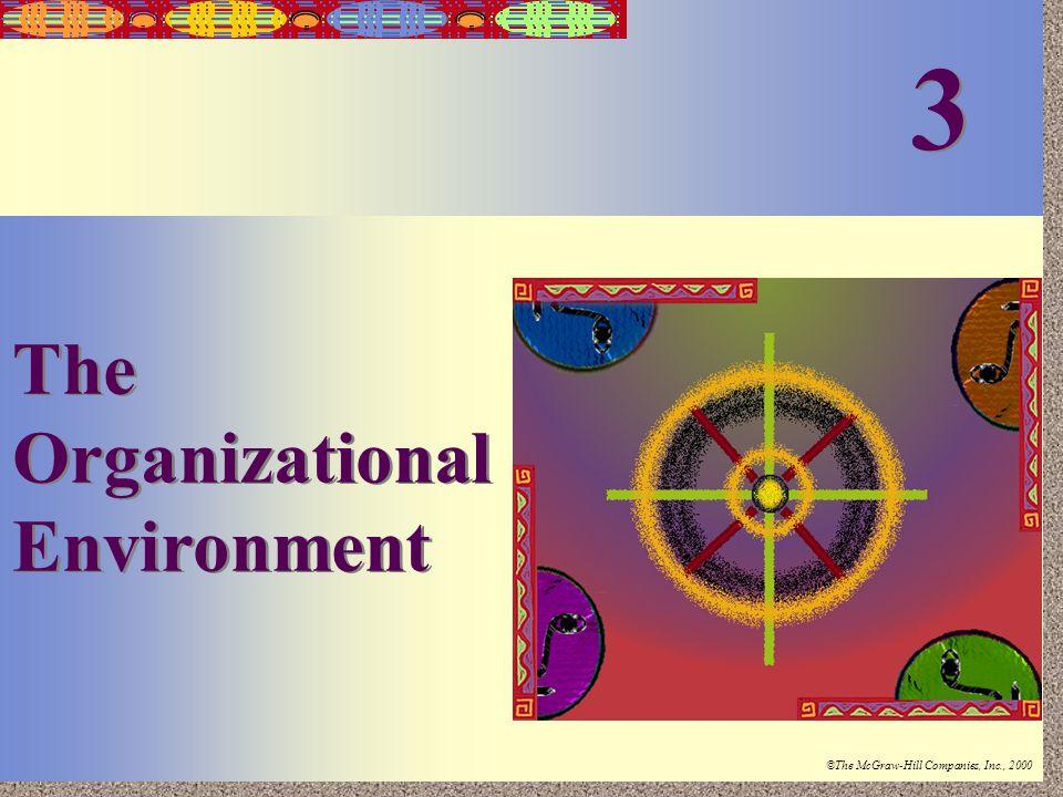 Irwin/McGraw-Hill ©The McGraw-Hill Companies, Inc., 2000 3-1 The Organizational Environment 3 3