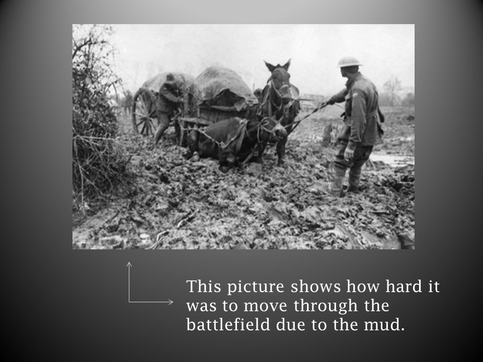 This picture shows how hard it was to move through the battlefield due to the mud.