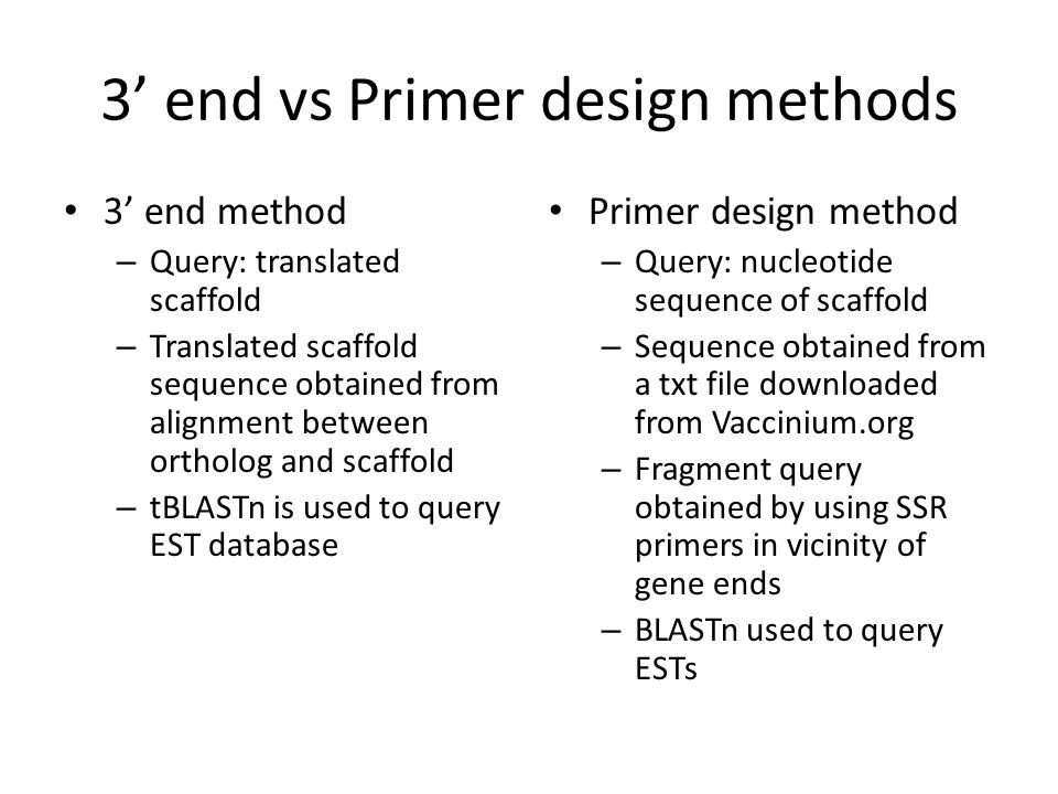 3' end vs Primer design methods 3' end method – Query: translated scaffold – Translated scaffold sequence obtained from alignment between ortholog and