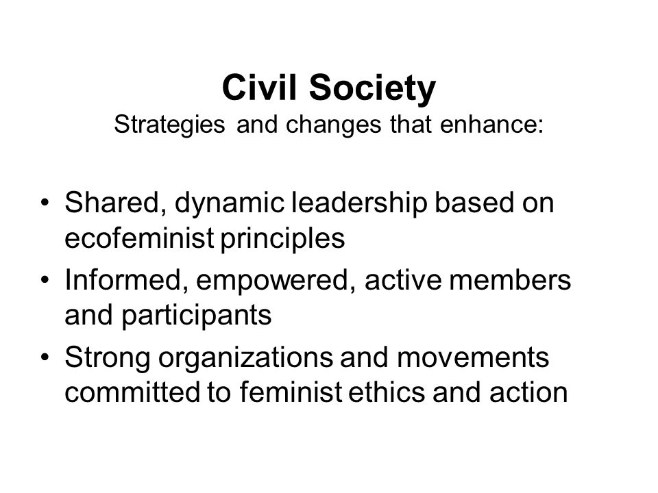 Civil Society Strategies and changes that enhance: Shared, dynamic leadership based on ecofeminist principles Informed, empowered, active members and