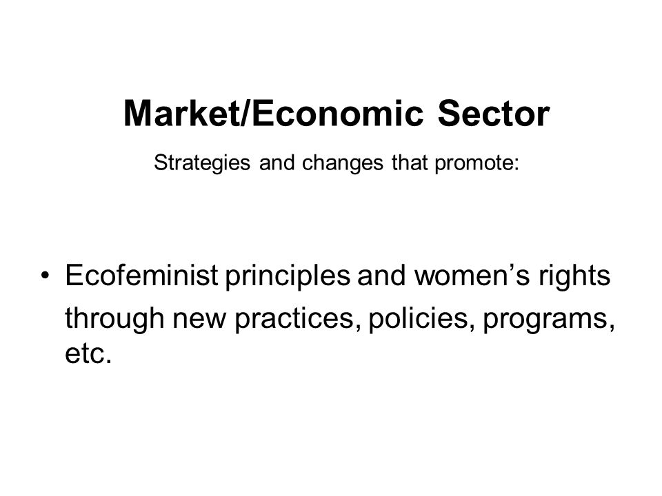 Market/Economic Sector Strategies and changes that promote: Ecofeminist principles and women's rights through new practices, policies, programs, etc.