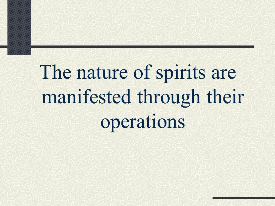Spirit of InfirmityLuke 13:11 Spirit of DivinationActs 16:16 Spirit of SlumberRomans 11:8 Spirit of Deep SleepIsaiah 29:10 Spirit of HeavinessIsaiah 61:3 Spirit of WhoredomHosea 4:12 Spirit of DevilsRevelations 16:14 Examples of Evil Spirits (cont)