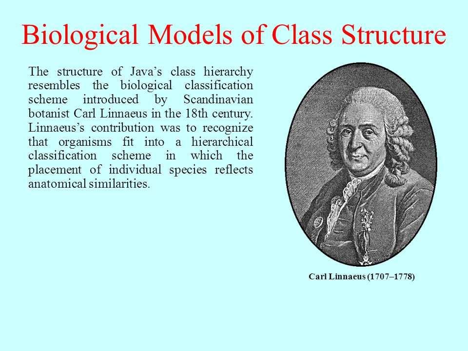 Biological Models of Class Structure The structure of Java's class hierarchy resembles the biological classification scheme introduced by Scandinavian botanist Carl Linnaeus in the 18th century.