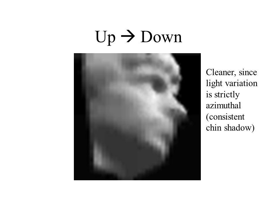 Up  Down Cleaner, since light variation is strictly azimuthal (consistent chin shadow)