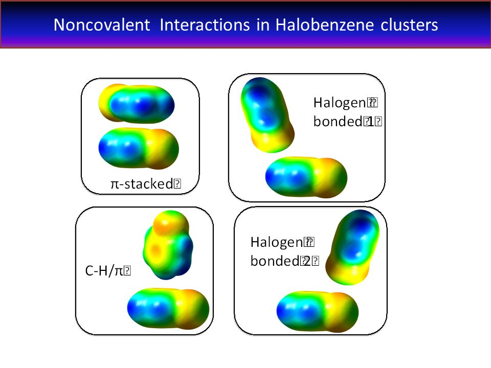Noncovalent Interactions in Halobenzene clusters