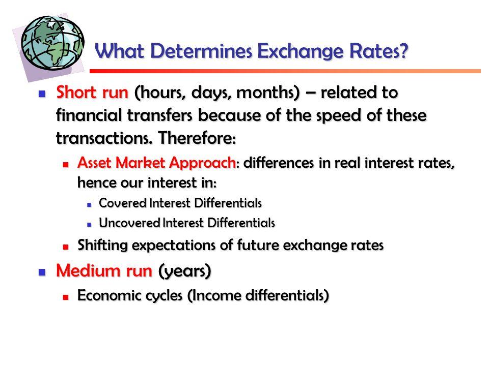 What Determines Exchange Rates.