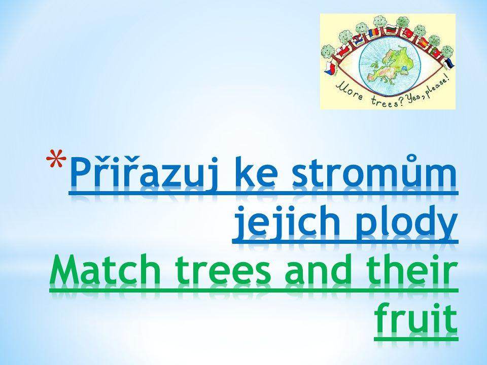 K jakému stromu patří žalud.What kind of tree are acorns from.