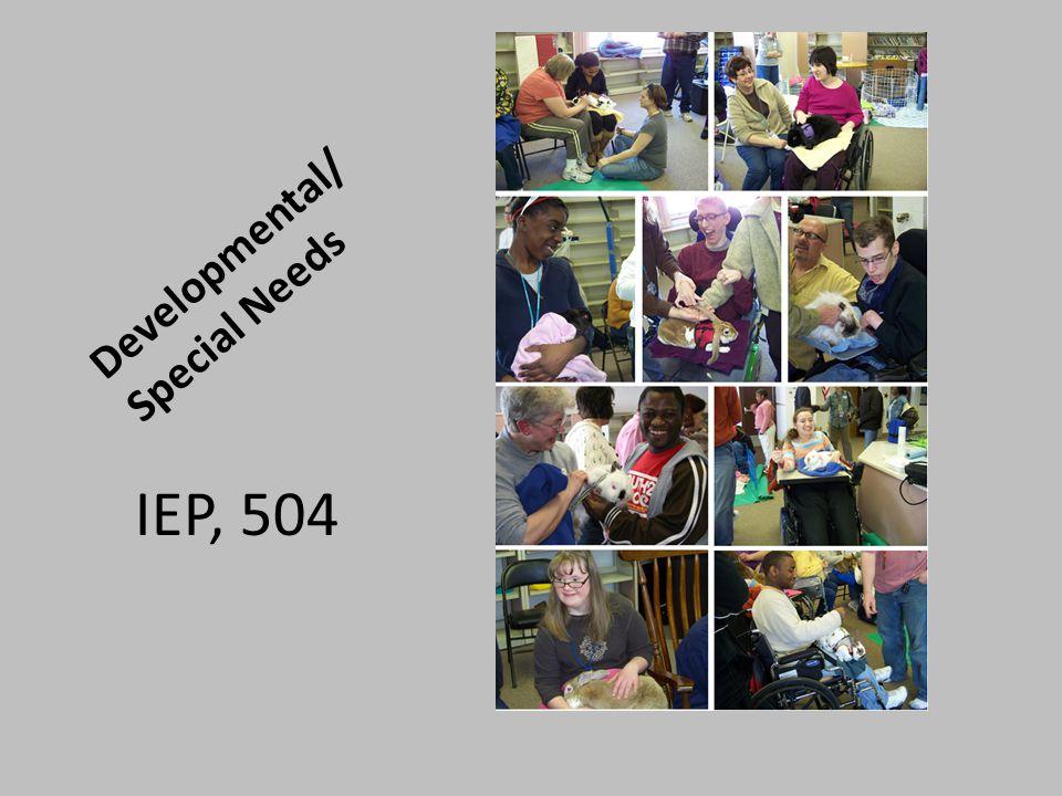 Developmental/ Special Needs IEP, 504