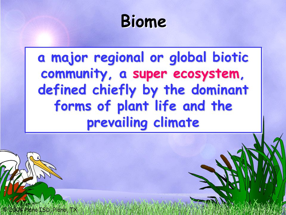 a major regional or global biotic community, a super ecosystem, defined chiefly by the dominant forms of plant life and the prevailing climate Biome