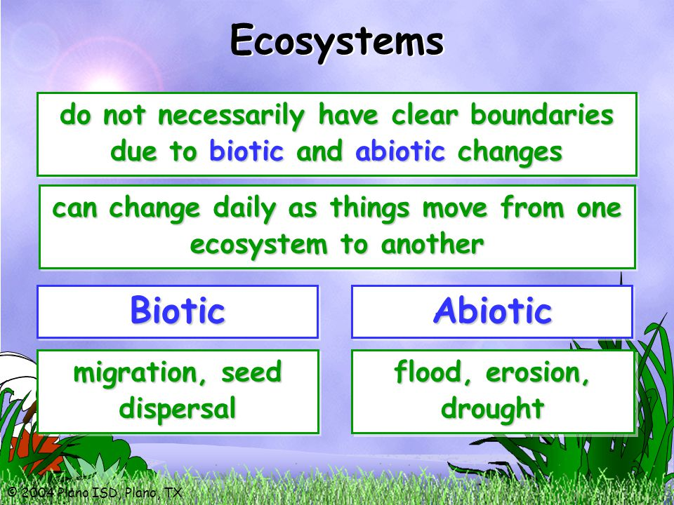 © 2004 Plano ISD, Plano, TX do not necessarily have clear boundaries due to biotic and abiotic changes Ecosystems BioticBioticAbioticAbiotic migration, seed dispersal flood, erosion, drought can change daily as things move from one ecosystem to another