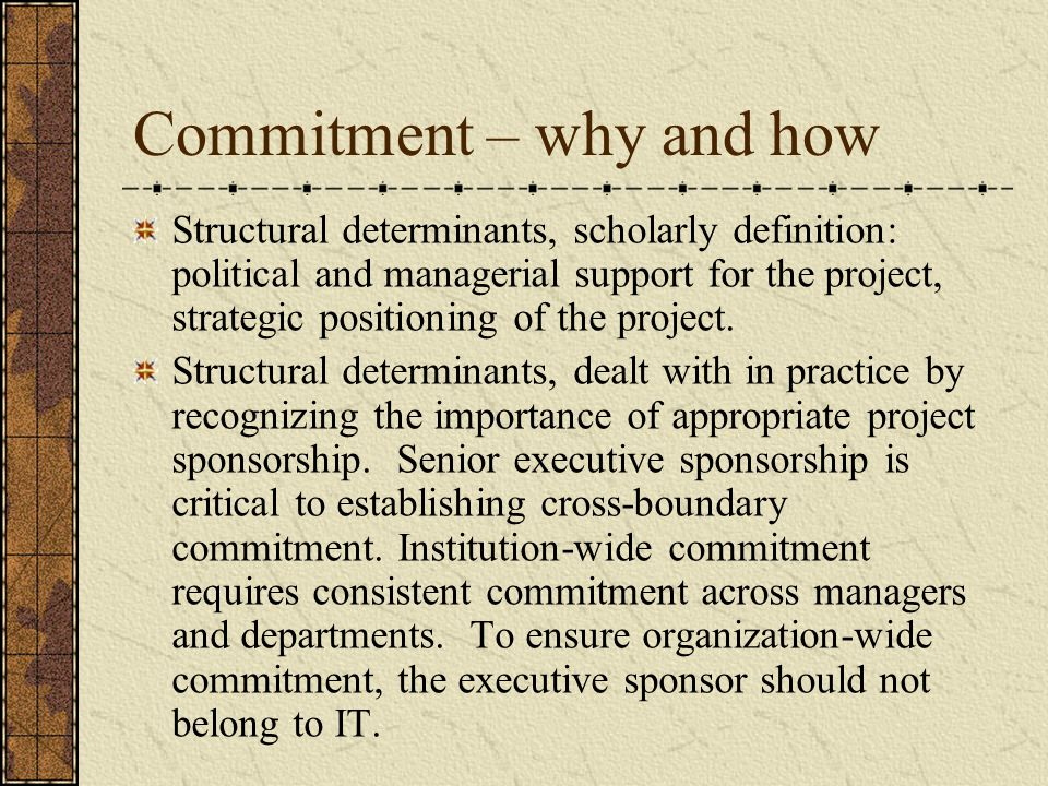 Commitment – why and how Structural determinants, scholarly definition: political and managerial support for the project, strategic positioning of the project.