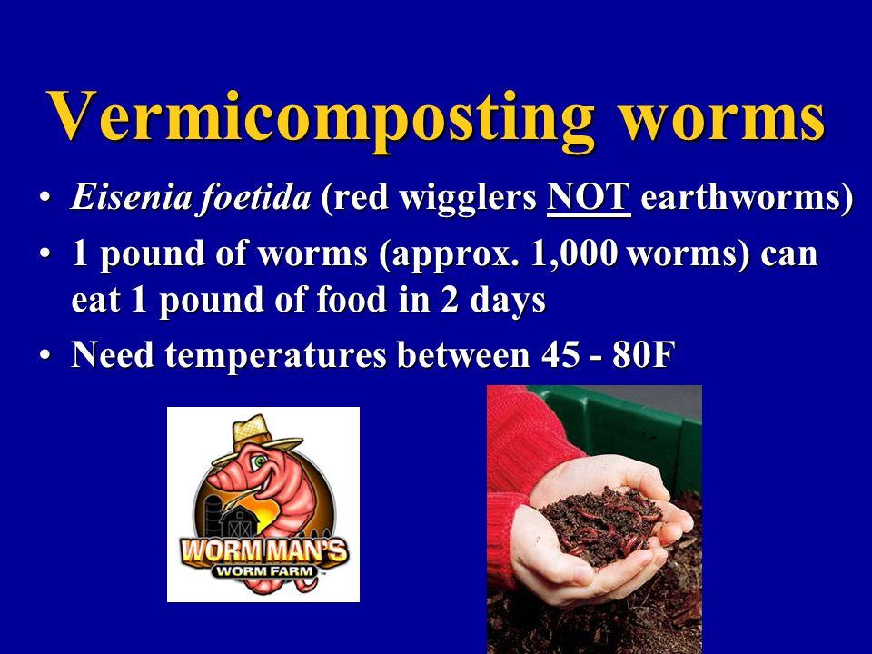 Vermicomposting worms Eisenia foetida (red wigglers NOT earthworms)Eisenia foetida (red wigglers NOT earthworms) 1 pound of worms (approx. 1,000 worms
