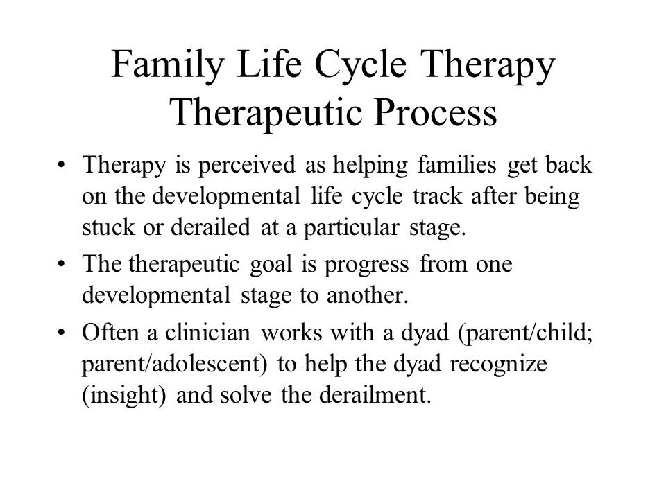 Family Life Cycle Therapy Therapeutic Process Therapy is perceived as helping families get back on the developmental life cycle track after being stuck or derailed at a particular stage.