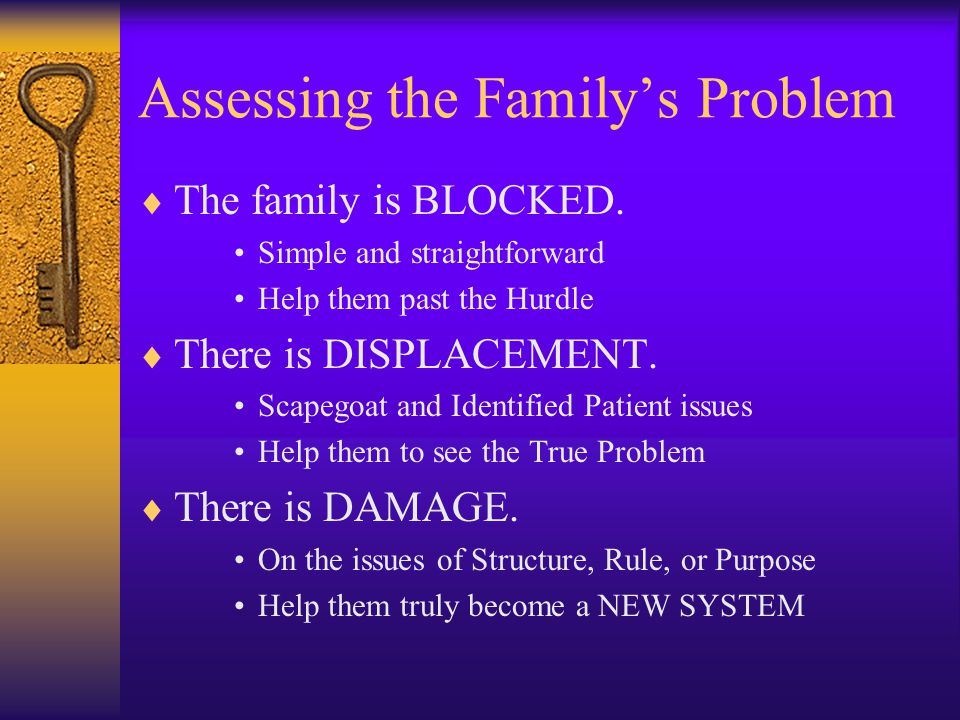 Assessing the Family's Problem  The family is BLOCKED.