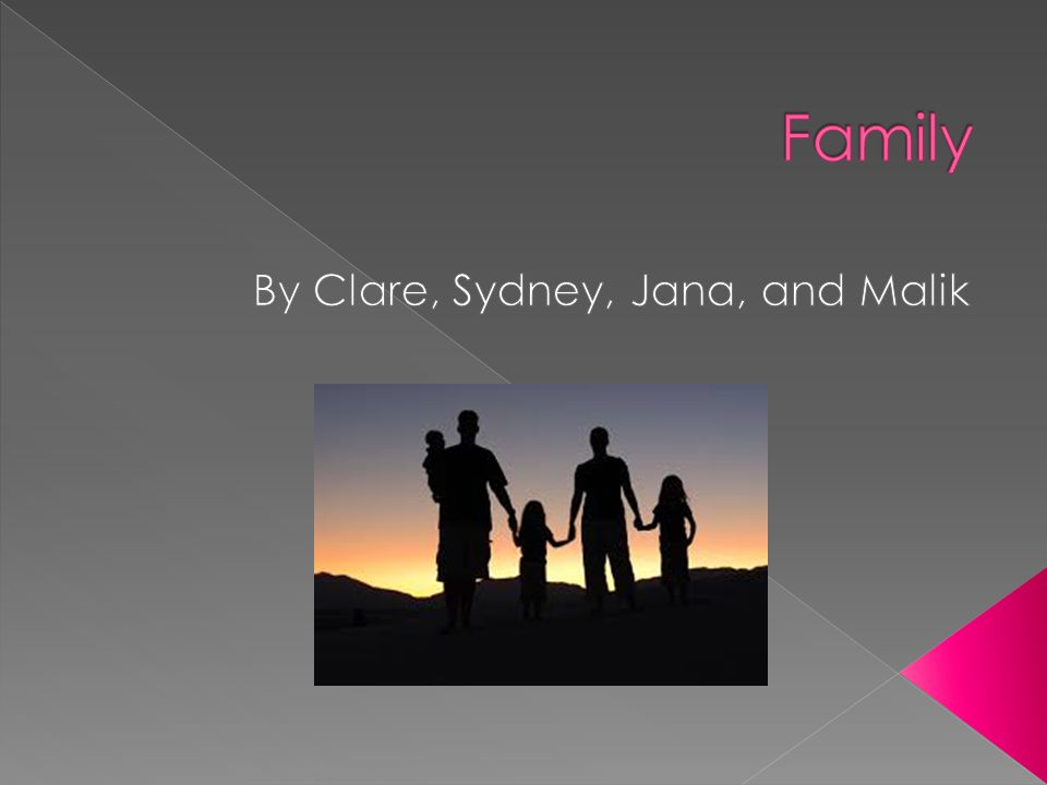  Family is defined as a group of people who are related by marriage, blood, or adoption and who live together and share economic resources