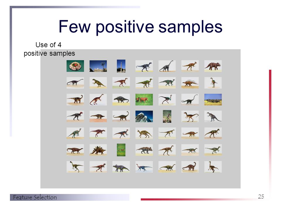 Feature Selection 25 Few positive samples Use of 4 positive samples