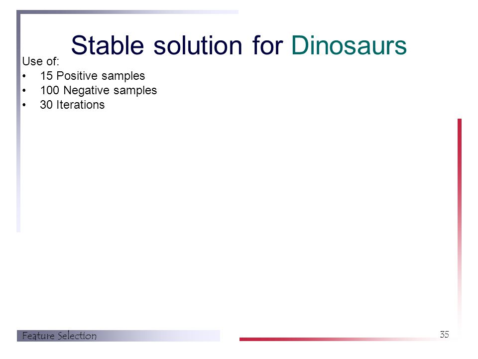 Feature Selection 35 Stable solution for Dinosaurs Use of: 15 Positive samples 100 Negative samples 30 Iterations