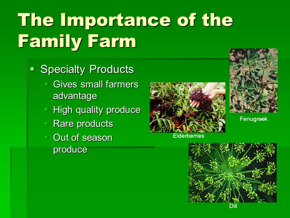 The Importance of the Family Farm  Specialty Products  Gives small farmers advantage  High quality produce  Rare products  Out of season produce