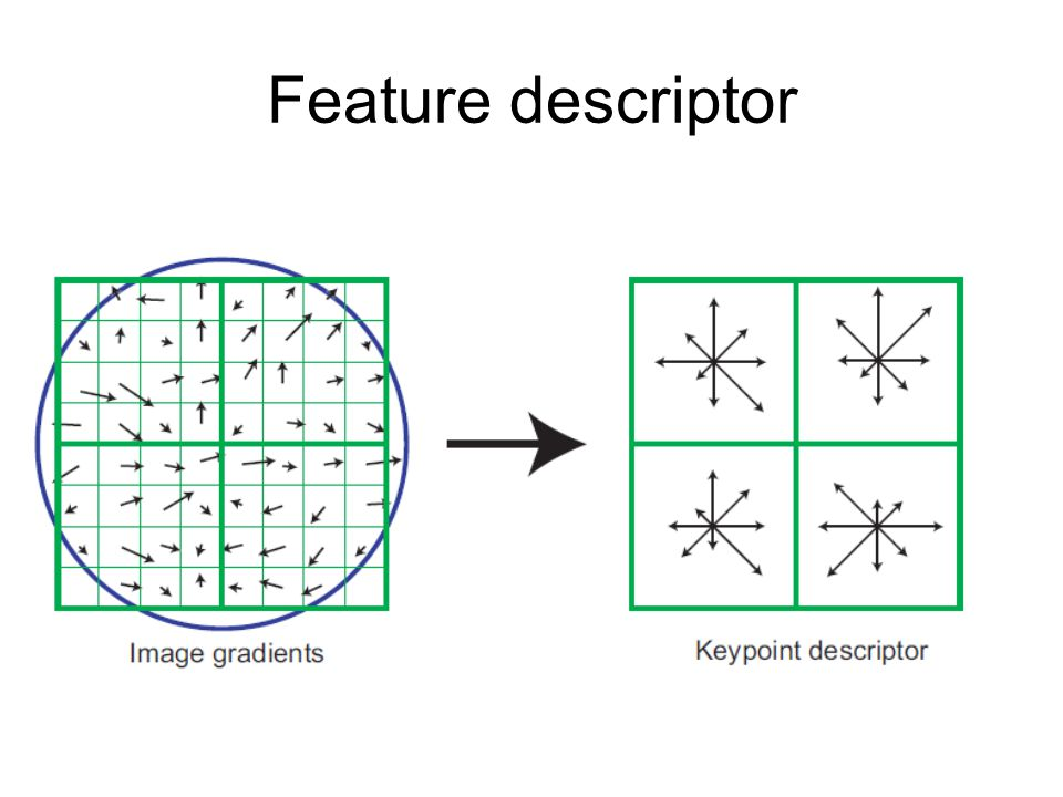 Feature descriptor