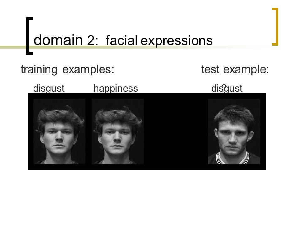 disgust domain 2: facial expressions disgusthappiness training examples:test example: