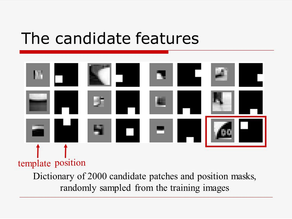 The candidate features Dictionary of 2000 candidate patches and position masks, randomly sampled from the training images template position