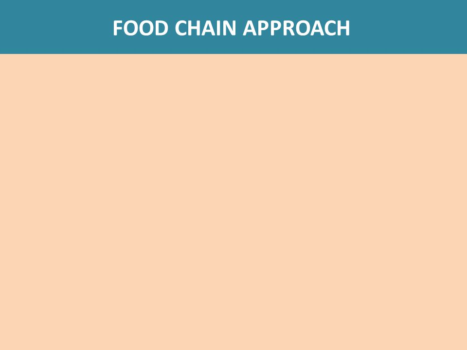 FOOD CHAIN APPROACH