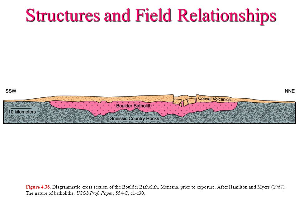 Figure 4.36. Diagrammatic cross section of the Boulder Batholith, Montana, prior to exposure. After Hamilton and Myers (1967), The nature of batholith