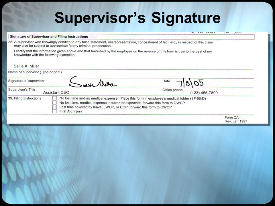Supervisor's Signature