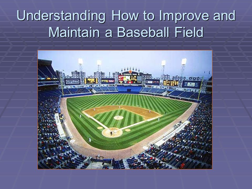 Areas of a Typical Baseball Field  The areas of a baseball field can be organized as follows:  Outfield grass/foul areas  Infield grass/soil  Skinned area and base paths  Pitcher's mound & home base area  Warning track and fence