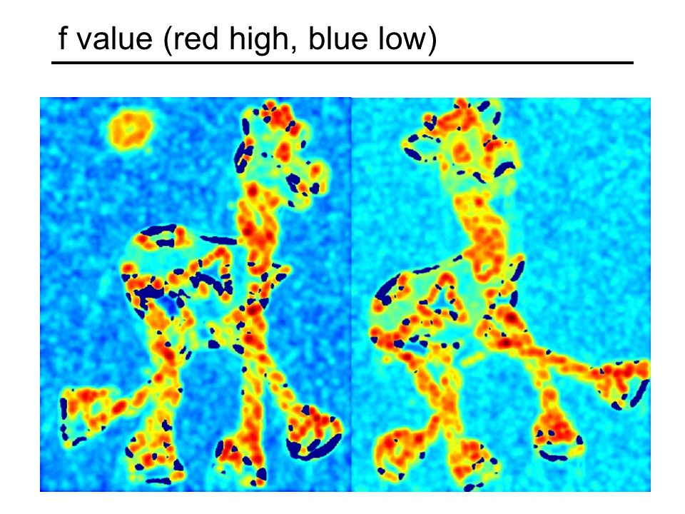 f value (red high, blue low)