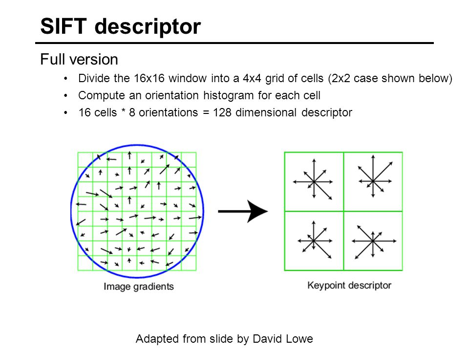 SIFT descriptor Full version Divide the 16x16 window into a 4x4 grid of cells (2x2 case shown below) Compute an orientation histogram for each cell 16