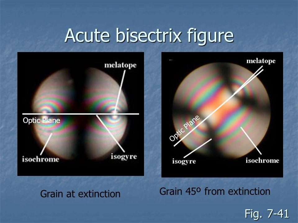 Fig. 7-41 Grain at extinction Grain 45º from extinction Acute bisectrix figure Optic Plane