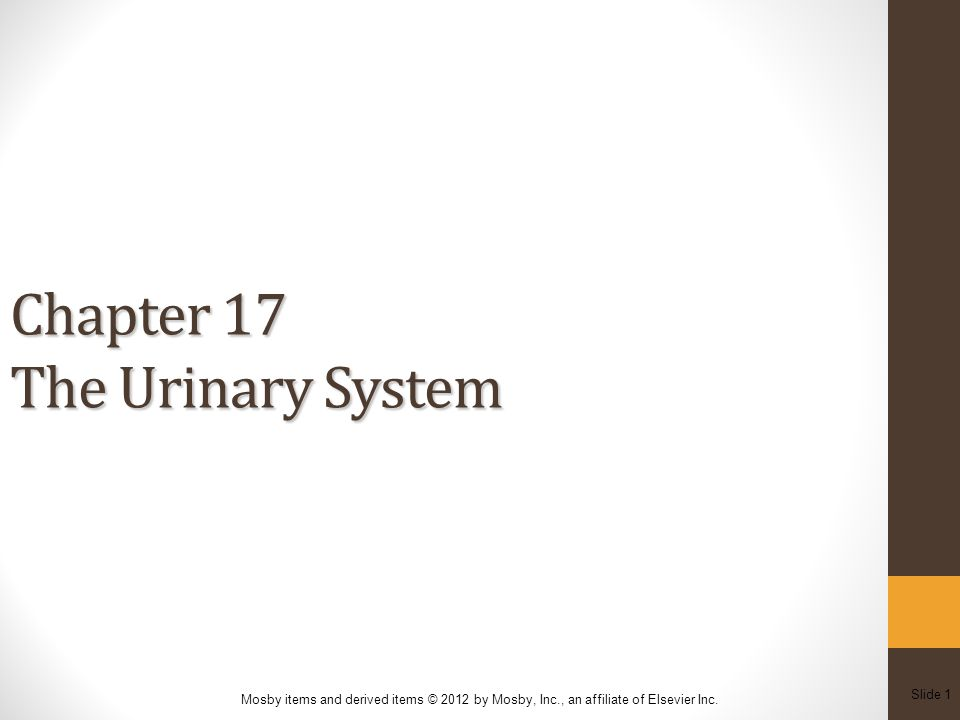 Slide 12 Mosby items and derived items © 2012 by Mosby, Inc., an affiliate of Elsevier Inc.