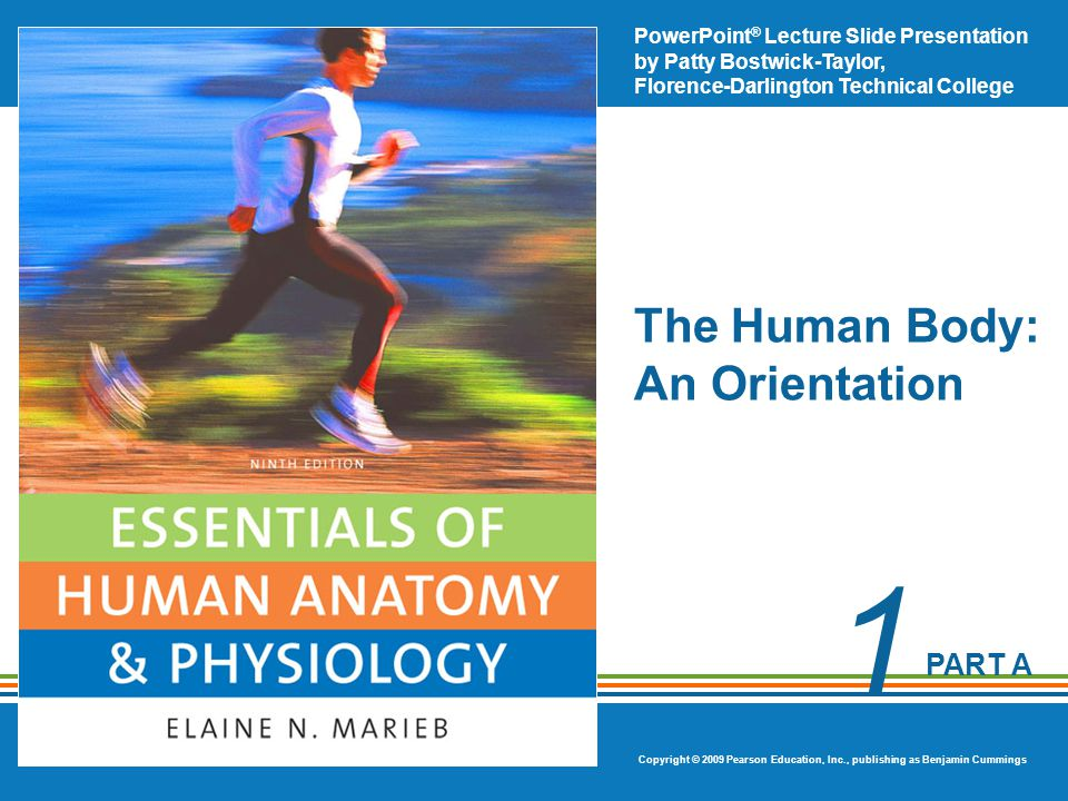 PowerPoint ® Lecture Slide Presentation by Patty Bostwick-Taylor, Florence-Darlington Technical College Copyright © 2009 Pearson Education, Inc., publishing as Benjamin Cummings PART A 1 The Human Body: An Orientation