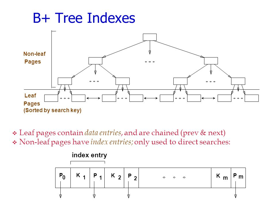 B+ Tree Indexes  Leaf pages contain data entries, and are chained (prev & next)  Non-leaf pages have index entries; only used to direct searches: P