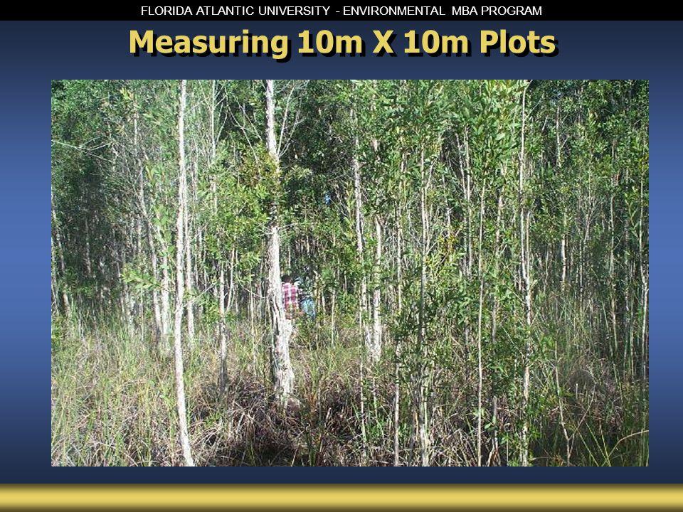 FLORIDA ATLANTIC UNIVERSITY - ENVIRONMENTAL MBA PROGRAM Measuring 10m X 10m Plots