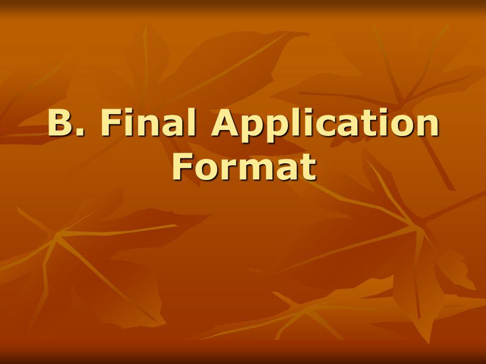 B. Final Application Format