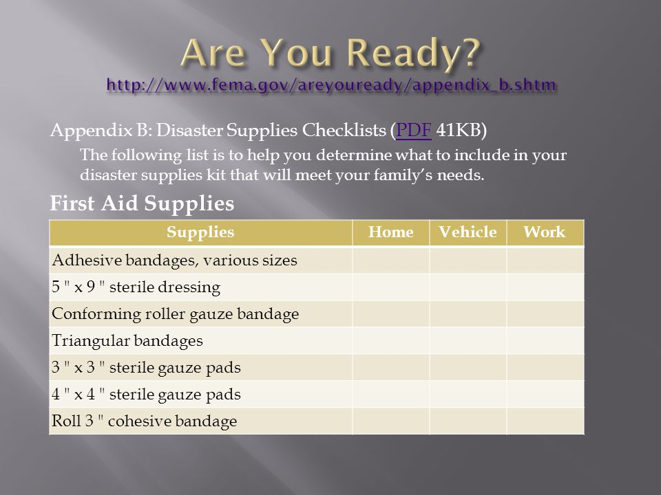 Appendix B: Disaster Supplies Checklists (PDF 41KB)PDF The following list is to help you determine what to include in your disaster supplies kit that will meet your family's needs.