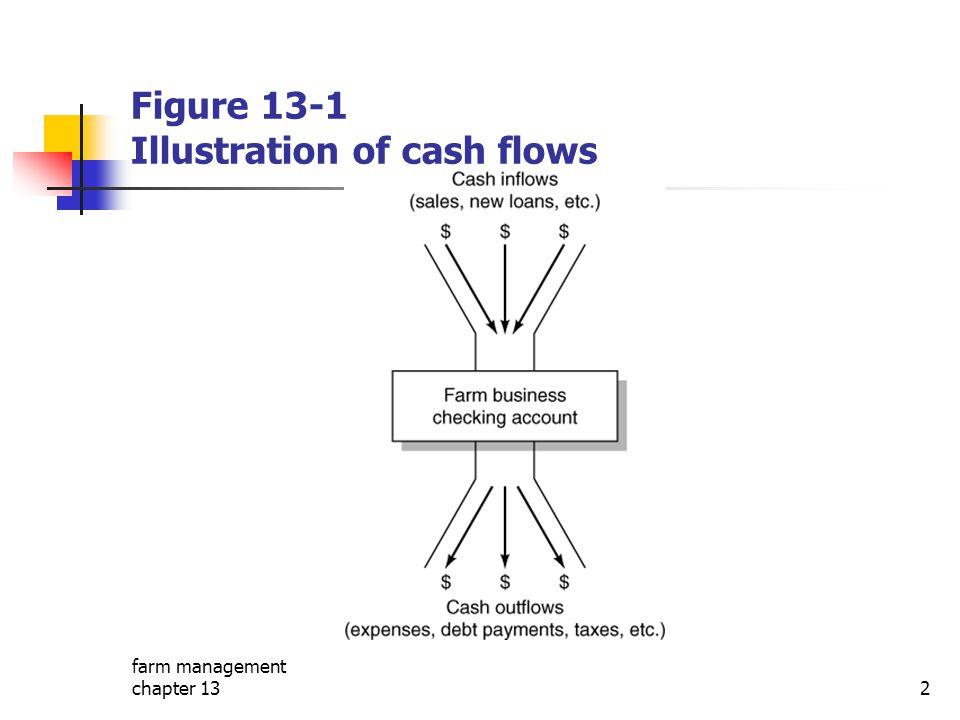 farm management chapter 132 Figure 13-1 Illustration of cash flows